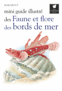 Mini guide illustré des faune et flore des bords de mer