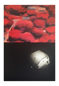 David Deutch Photographs & painting